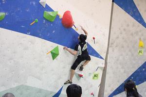 『ボルダリング競技』の画像