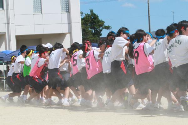 『中学校体育祭(2)』の画像