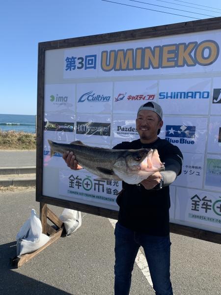 『UMINEKO CUP (2)』の画像