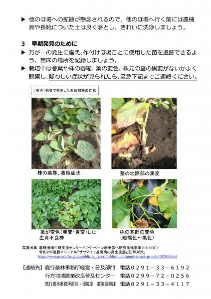 『基腐病茨城県チラシ(2)』の画像