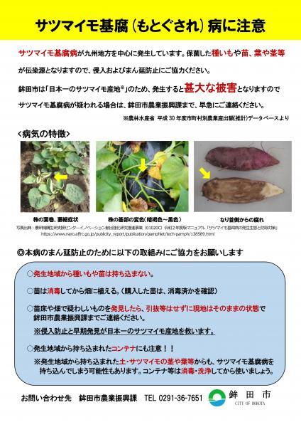 『鉾田市サツマイモ基腐病チラシ』の画像
