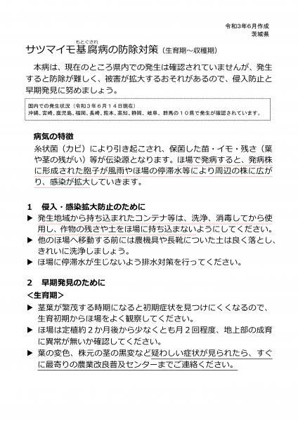 『サツマイモ基腐病防除対策(生育期~収穫期)(1)』の画像